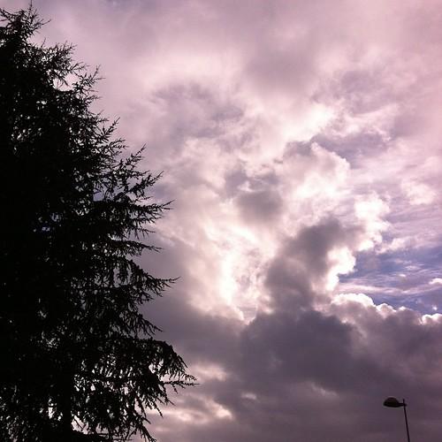 Neige fondue et lumières d'automne