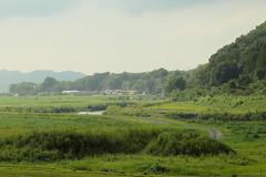 (conan-liu) Tags: landscape kyoto village pedestrian