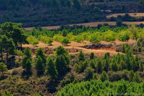 "Salinas del Manzano: Vista desde las eras altas • <a style=""font-size:0.8em;"" href=""http://www.flickr.com/photos/26679841@N00/15508899105/"" target=""_blank"">View on Flickr</a>"