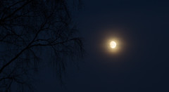 Night (Ludvius) Tags: moon night dark three full after ludovicophotography wwwludovicophotocom