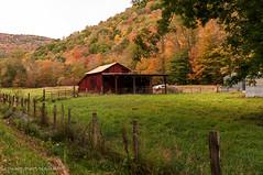 Dryfork (Denise @ New Mercies I See) Tags: autumn barn fence outdoors countryside farm september westvirginia appalachia dryfork 2014 randolphcounty onethousandgifts