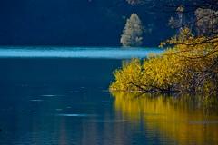 """il giallo ... nel blu ("""" paolo ammannati """") Tags: autumn lago raw acqua autunno trentino tenno lagoditenno paoloammannati"""