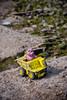 (Kamcia666) Tags: jezioro misio różowy robotnik zabawka górażar międzybrodzieżywieckie międzybrodzkie
