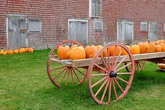 Wagon load (halifaxlight) Tags: autumn windows red orange canada green fall barn wagon doors pumpkins annapolisvalley portwilliams