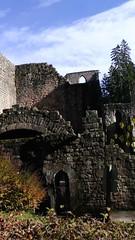 S1610156 (maaß) Tags: november himmel ruine schwarzwald allerheiligen wanderung 2014 klosterruine bäume klosterruineallerheiligen november2014
