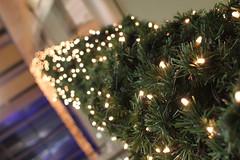 Endless Christmas lights