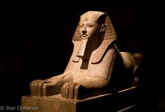 Met_museum-23 (Jhan Cinnamon) Tags: new york city nyc rome art museum 35mm nikon egypt mummy met metropolitan hercules hieroglyphics the scultures