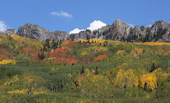 Ruby Range (Jeff Mitton) Tags: mountains forest landscape colorado scenic wilderness aspen quakingaspen wondersofnature rubyrange thedyke westernlandscape earthnaturelife