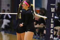 IMG_1135 (SJH Foto) Tags: school girls high team catholic sub rotation volleyball schools championships prep substitution districts berks delone
