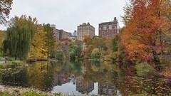Central Park (tomweidlein) Tags: nyc autumn usa newyork fall centralpark manhattan herbst