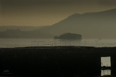 vilaboa (todas las fotos copyright pablo boullosa) Tags: salinas illasansimn