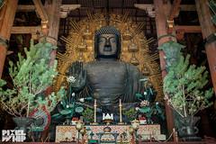 Tōdai-ji temple bronze buddha kyoto japan 2014 (pixelwhip) Tags: art japan bronze temple kyoto shrine buddha cast todaiji 2014 tōdaiji