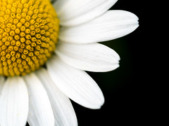 the sun? (Gabriele Sesana) Tags: