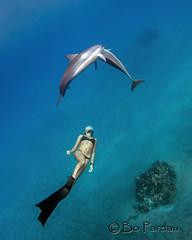 Emily at Ho'okena (bodiver) Tags: hawaii hookena ambientlight wideangle blue ocean fins freediving dolphin naia