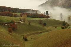 Parco naturale della Lessinia (alessandramontolli) Tags: parconaturaledellalessinia lessinia paesaggi veneto landscape