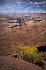 Canyonlands (Russell Eck) Tags: outdoor landscape desert utah canyonlands national park russell eck scenery travel canyon moab nature clouds sky islands mesa sandstone cliffs green overlook river ngc