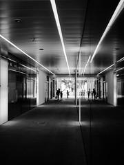Small ones. (franleru1) Tags: abstract architecture architecturecontemporaine bw backlight light london londres nb omdem5 olympus photoderue reflection reflet streetphotography uk blackandwhite monochrome noiretblanc