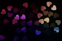 Polarized love (Elopez ) Tags: macromondays backlit sooc