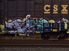 PIKE (TheGraffitiHunters) Tags: graffiti graff spray paint street art colorful freight train tracks benching benched boxcar pike stamped