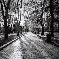 Novodevichiy convent (Konstantin Agaltsov) Tags: landscape light cityscape city clouds cloud cloudscape church medium format film filmphoto film120 120 bw bwmoscow 6x6 carlzeiss zeiss water outdoor trees tree travel tourism fuji fujifilm neopan wideangle