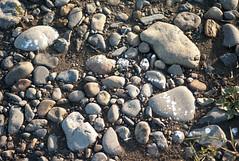 L1009419c (haru__q) Tags: leica m8 voigtlander colorskopar stone