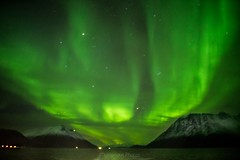 Amazing Northern Light (Dennis Kirstein) Tags: northern light lights norway nature norwegen natur sky dark mountain stars polarlichter polarlicht aurora borealis finnmark scandinavia skandinavien sea ocean coast snow water hills ship boat travel traveling arctic