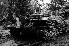DSC_1597 (andrzej56urbanski) Tags: chernobyl czaes ukraine pripyat prypeć kyivskaoblast ua