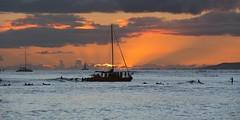 Waikiki Sunset (Oliver Leveritt) Tags: nikond7100 afsdxvrnikkor18200mmf3556gifed oliverleverittphotography hawaii oahu waikiki waikikibeach sunset boat