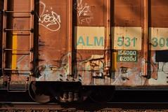 CAMEO (TheGraffitiHunters) Tags: cameo graffiti graff spray paint street art colorful freight train tracks benching benched boxcar