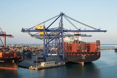 Port de Valencia (Pascale Jaquet & Olivier Noaillon) Tags: pontsroulants port stro mer conteneurs porteconteneurs quais grues valence espagne es