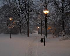 Trail Through the Park (Mister.Marken) Tags: path park lamp sweden larsboda winter snow nikon nikond5100 nikonnikkor