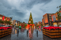 Jbeil Christmas Tree, Lebanon (Paul Saad) Tags: christmas tree lebanon byblos jbeil night lights sky clouds wide angle colors nikon outdoor
