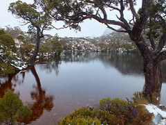 Wombat Pool (LeelooDallas) Tags: australia tasmania cradle mountain landscape dana iwachow fuji finepix hs20 exr dove lake water cloud sky tree forest