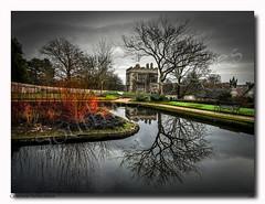 Cotehele Reflections (jeremy willcocks) Tags: cotehele cornwall uk england reflection tree colour landscape water winter castle nationaltrust bench garden sky jeremywillcocks wwwsouthwestscenesmeuk fujixt10 xf1024mm