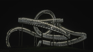 . tiger and turtle