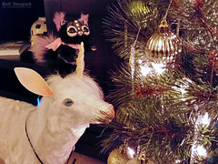 Oh, Christmas Tree! (AtomicSpaceKitty) Tags: unicorn fuegofatuo livingwithunicorns mythicalcreatures gakmancreatures kitty kitten arttoy toy christmas christmastree
