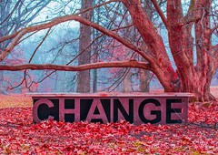 Change (patkelley3) Tags: change word tree fall autumn cold bench