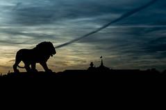 Le Lion veille (GLVF) Tags: statuedelion grandpalais placedelaconcorde paris lion silhouette dusk sky ciel