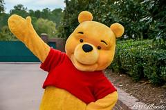 Pooh (disneylori) Tags: pooh winniethepooh disneycharacters nonfacecharacters meetandgreetcharacters characters america worldshowcase epcot waltdisneyworld disneyworld wdw disney