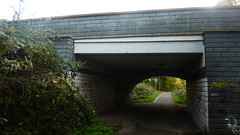 Rowntree Railway / Foss Island Branch   old railway  (York) (dave_attrill) Tags: york rowntree line foss island disused railway trackbed confectionery industry closed cycle path footpath sustrans national network goods 1895 1988 october 2016 bridge
