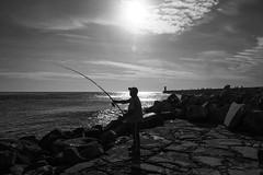 Acção / Action - EXPLORE Dec 1, 2016 #76 (Francisco (PortoPortugal)) Tags: 2432016 20161026fpbo4341 pb nb bw monocrome pescador fisherman fozdodouro porto portugal portografiaassociaçãofotográficadoporto franciscooliveira