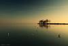 (tozofoto) Tags: europe hungary zala tozofoto canon landscape lake balaton sunset water waterreflection birds sky lights shadows colors trees travelling travel holiday harbor
