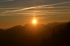 2.12.16. Einfach zum Geniessen. (dreistrahler) Tags: luchs baselland eap swiss airshows zoobasel langeerlen zrh natur hunter fcbasel fasnacht blche