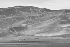 A Wall of Sand (brucetopher) Tags: dune dunes sanddunes people man woman kids hike hiking hikers adventure travel sightsee tourism tourist climb awe breathtaking trails trail trailhead black white blackandwhite bw blackwhite monochrome tone tones