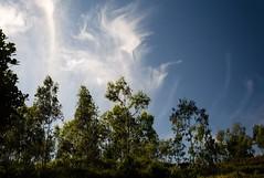 Dancing clouds (ashok kolluru) Tags: araku andhrapradesh visakhapatnam vizag