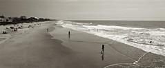 End of Summer (Ilford PanF+ film) (F. Neil S.) Tags: summer beach panorama sand dunes surf sunbathing swimming horizonline blackandwhite blancetnoir ilfordpanf negative film xtol selfdev bronicaetrsi zenzanon 135w bwfp