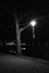 Hannover - Lantern (superbart77) Tags: blackandwhite dusk fuji fujifilm hannover maschsee night tree xt2 acros lamp lantern light monochrome
