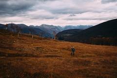 Mountain Poseathon (spesialsnorre) Tags: autumn mountains slr fall norway nikon ptarmigan hunt sunnmøre 2014 d600 eidsdal