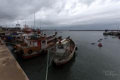 Botes (Tapir! Uno de los tantos nios perdidos.) Tags: puerto botes barcos rocha lapaloma ocano ocanoatlntico
