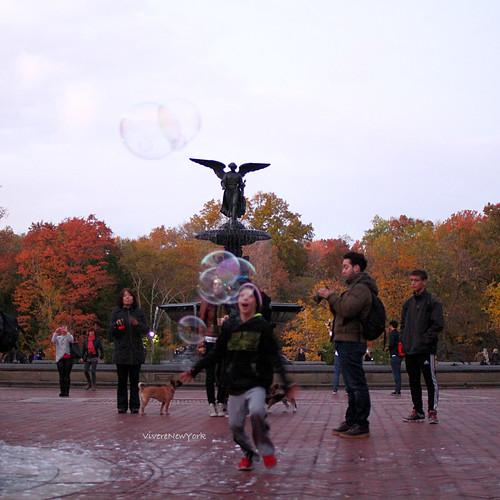 fall62